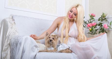 SUNU KIRPYKLA VILNIUJE dog and cat