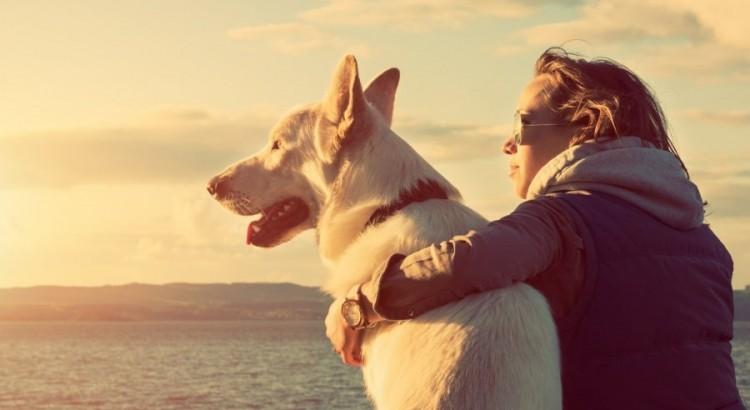 suns meile zmogui